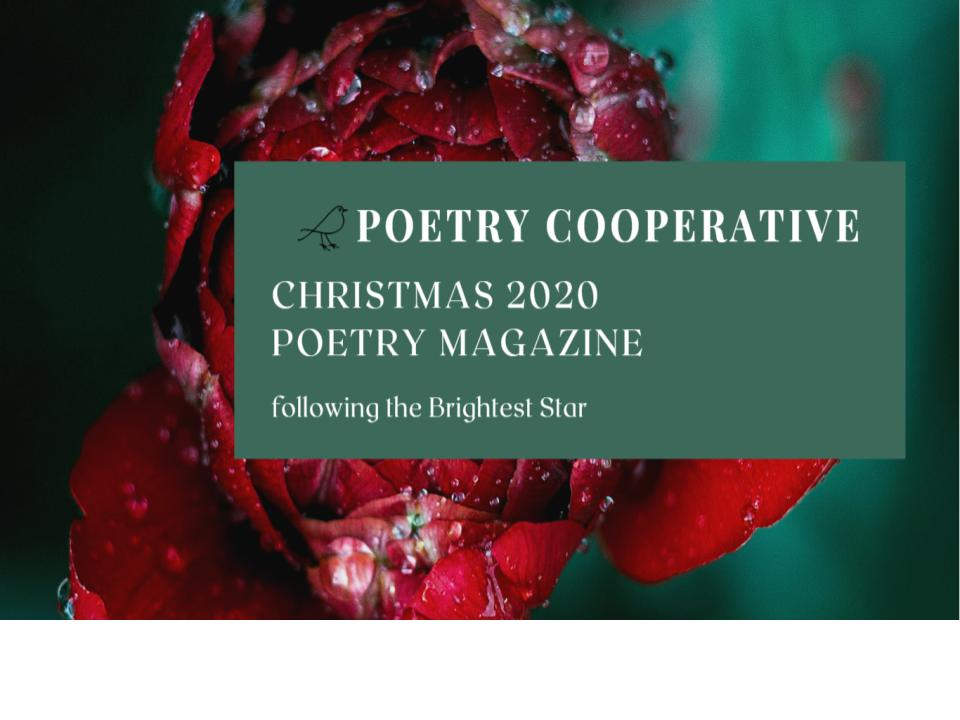 Poetry Cooperative eZine Christmas 2020